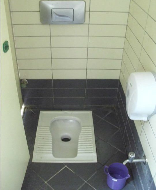 Images Of Small Bathroom Designs In India: Toilets: Asia Vs Europe
