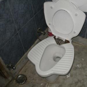 Toilets Asia Vs Europe