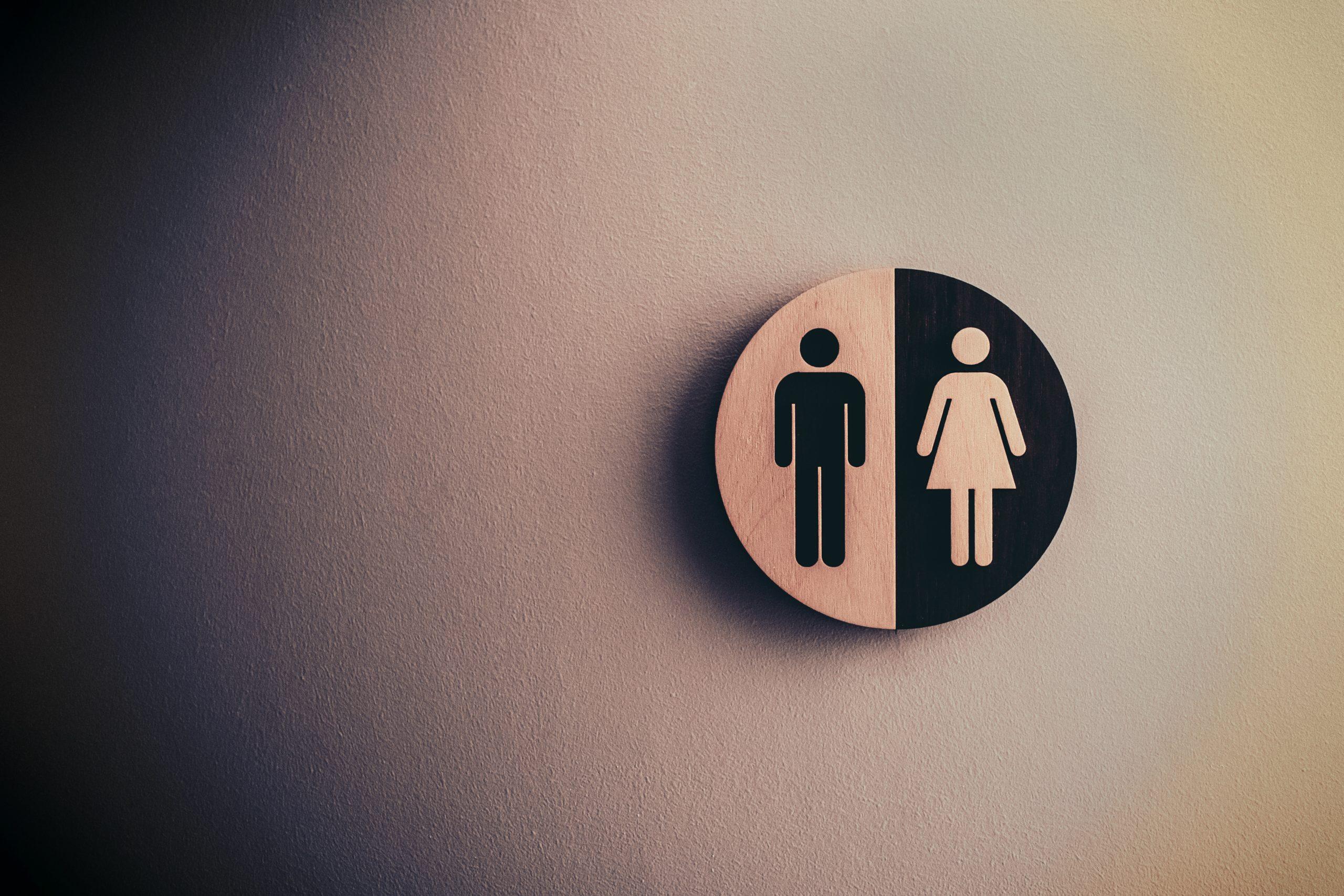 Toilets Around the World
