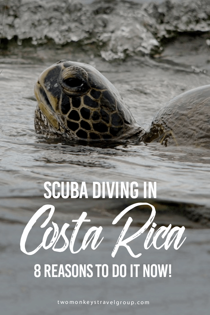 SCUBA Diving in Costa Rica - 8 Reasons to do it now!