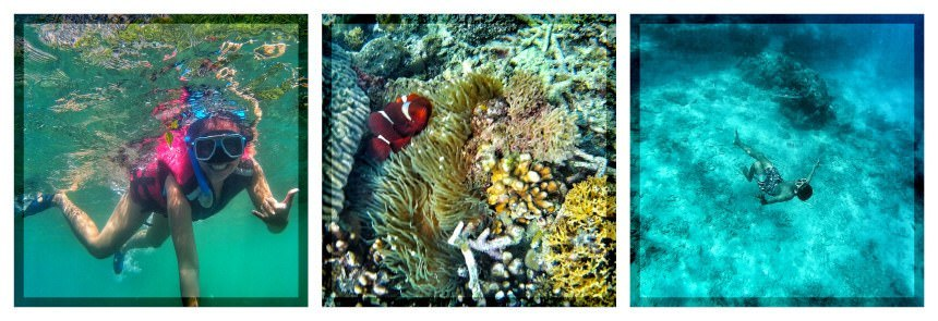 e nido under the sea