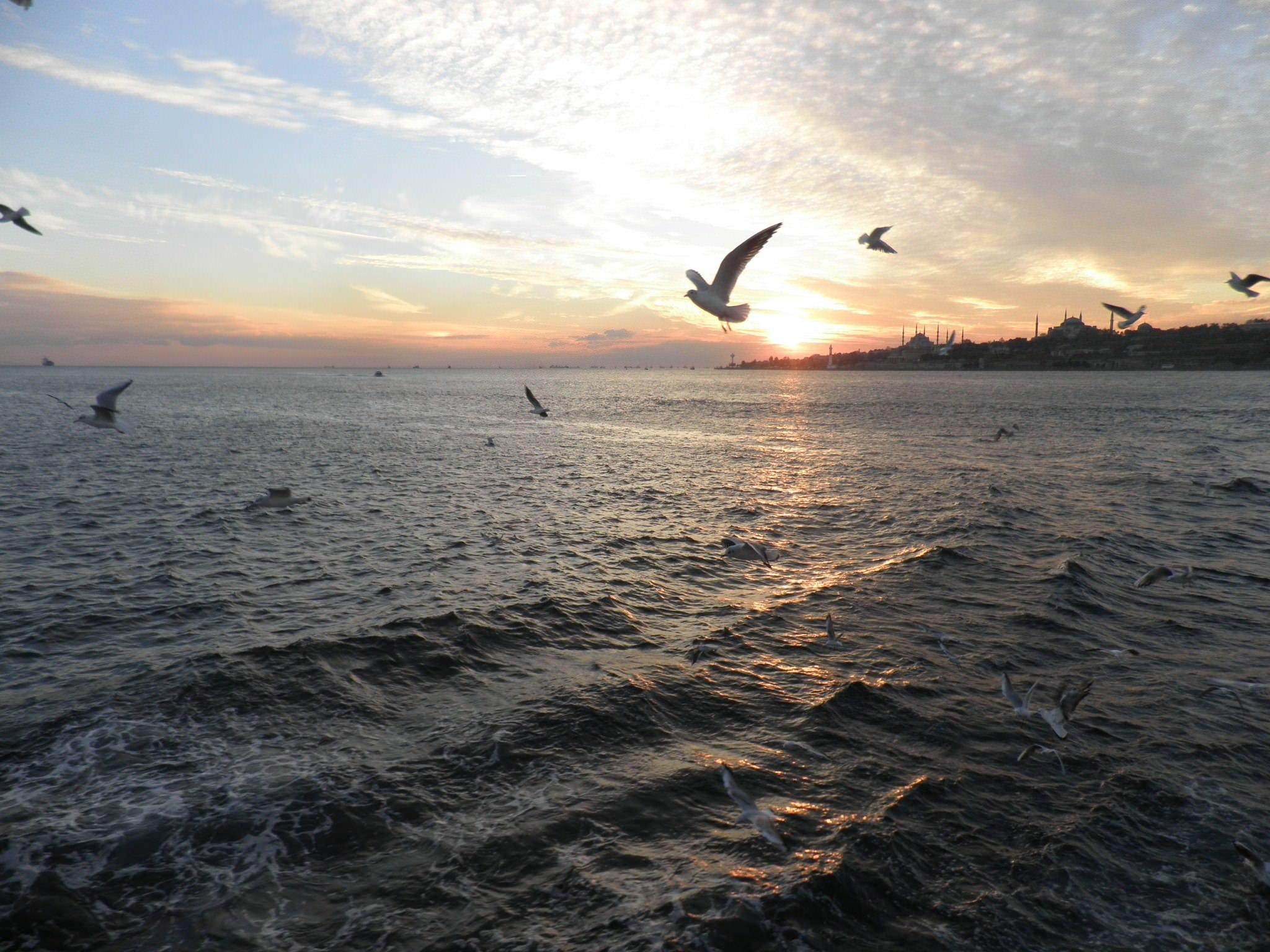 Cruise Bosphorus Istanbul turkey