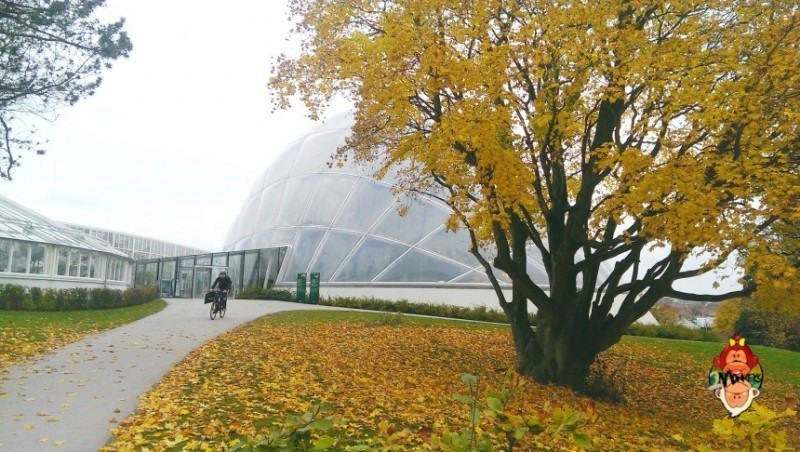 7 awesome things to do in aarhus 9