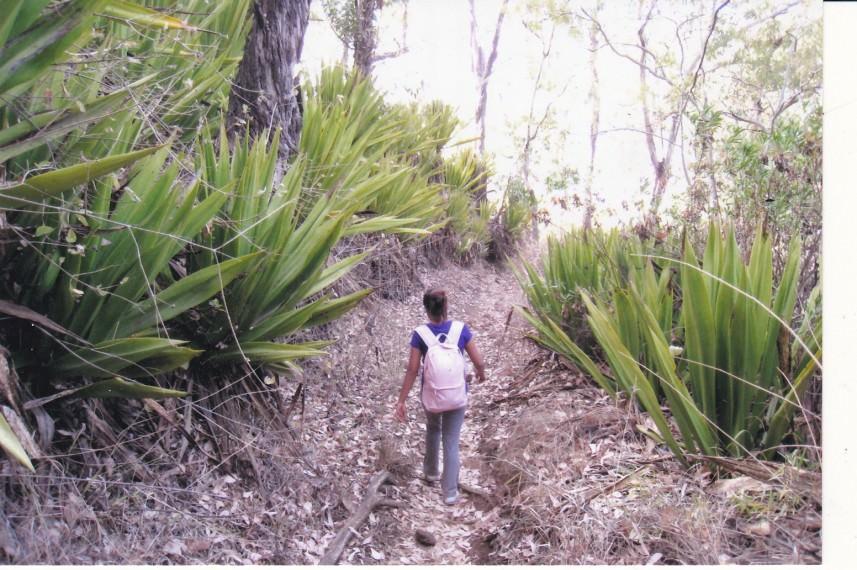 Fogo Island 8