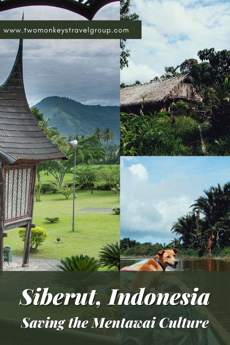SIBERUT, Indonesia Saving the Mentawai Culture