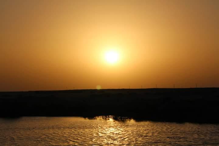 Beauty in Kuwait 24