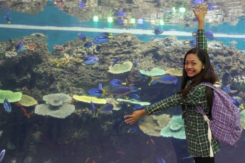 Awesome Things To Do in Kamagowa 8
