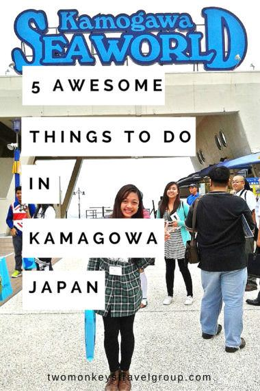5 Awesome Things To Do in Kamagowa, Japan