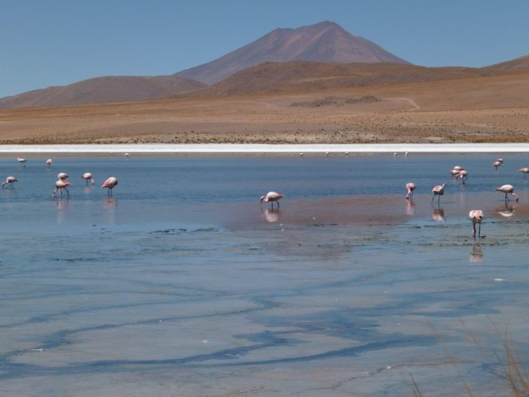 Awesome Things To Do In Bolivia