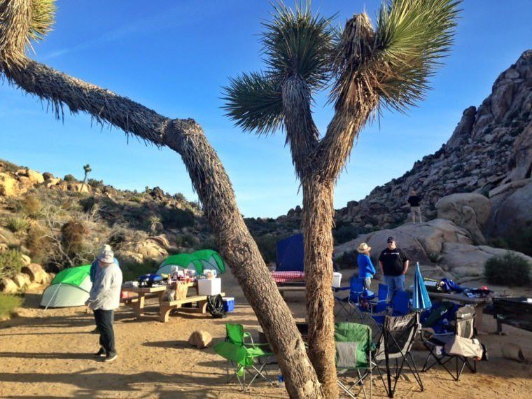 Road Trip in USA - Camping in Joshua Tree National Park