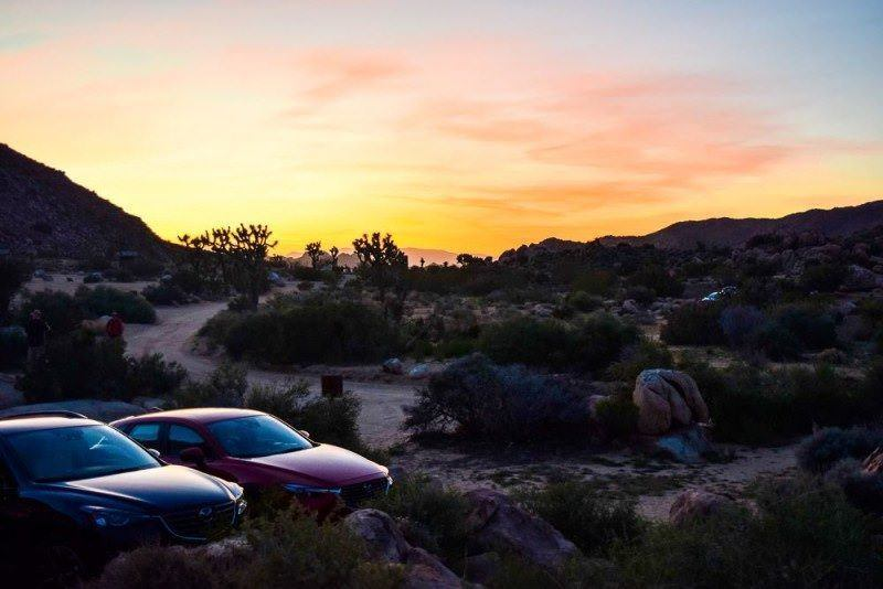 Road Trip in USA - beautiful sunset in Joshua Tree National Park