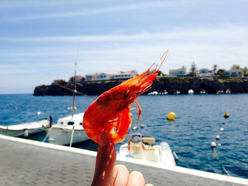 Two Monkeys Travel - restaurants in Menorca 6 - Dining under the windmill at Es Moli d'es Raco