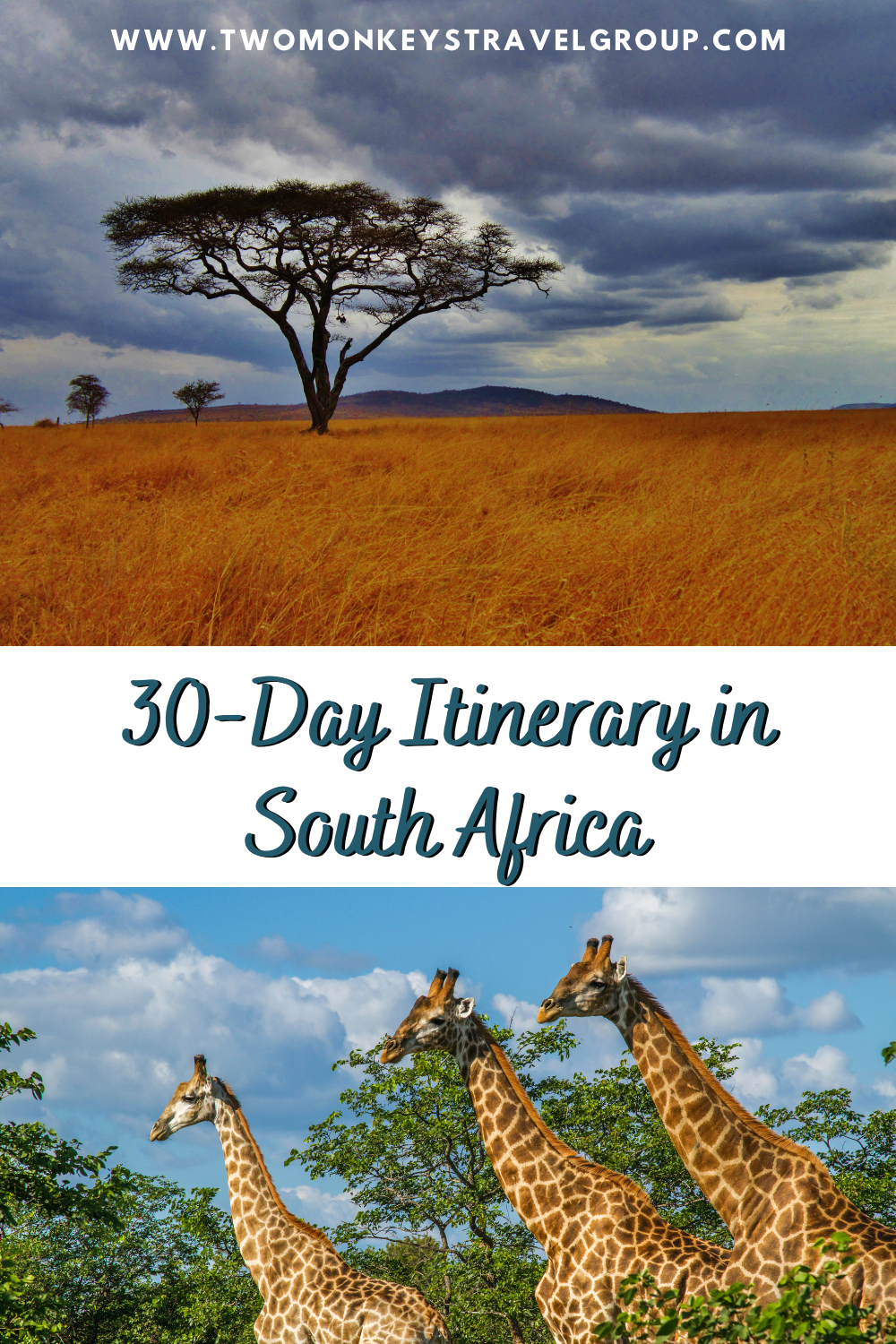 30 Day Itinerary in South Africa from Johannesburg, Rustenburg, Eastern Cape to Cape Town