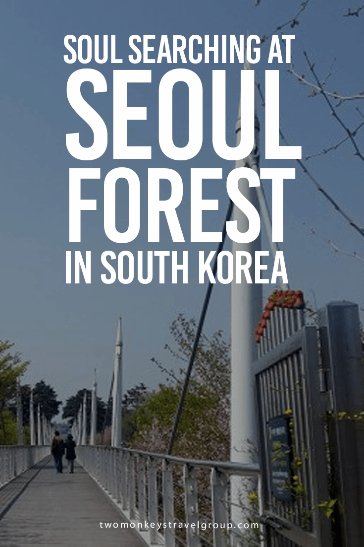 Soul Searching at Seoul Forest in South Korea