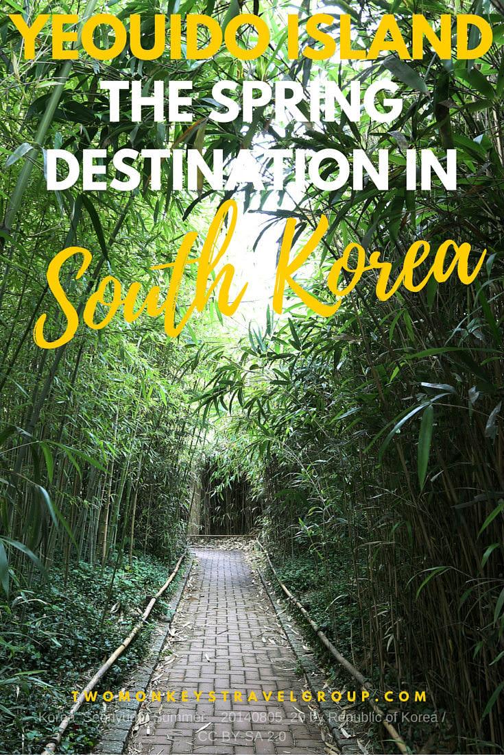 Yeouido Island: The Spring destination in Seoul, Korea