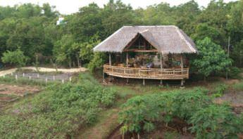 Coco Farm Hostel - Ultimate List of the Best Hostels in Bohol, Philippines