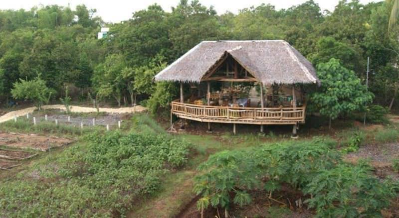 Bohol Coco Farm Hostel - Best Hostels in Bohol, Philippines