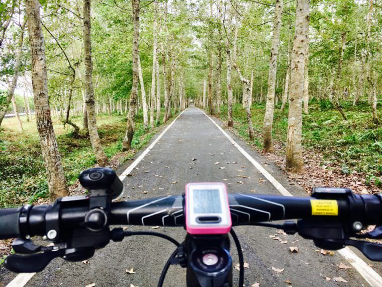 Why You Should Explore a New Place Via Bike