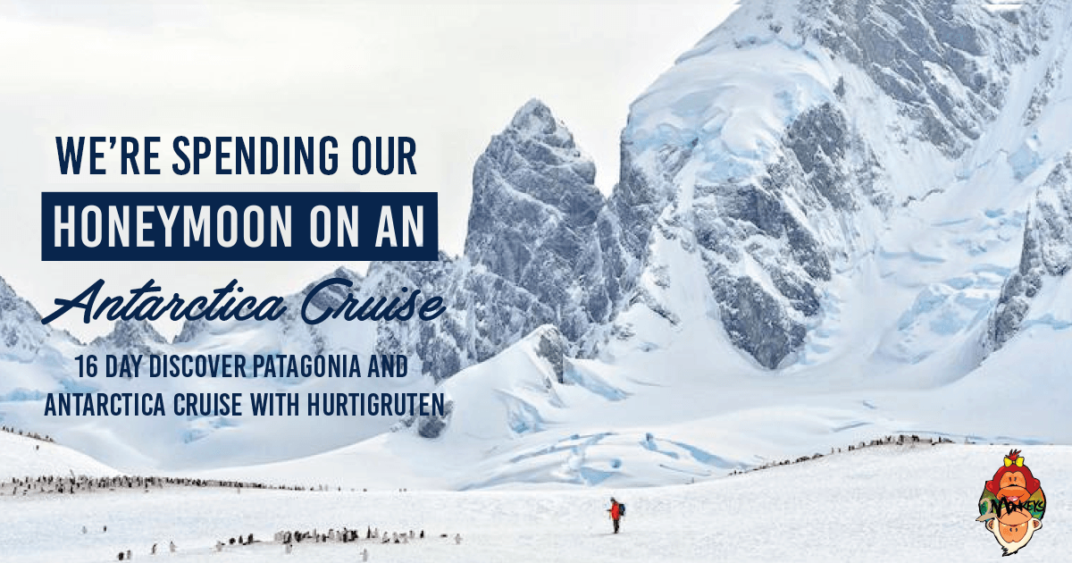 best antarctica cruise - We're Spending our Honeymoon on an Antarctica Cruise - 16 Day Discover Patagonia and Antarctica Cruise with Hurtigruten