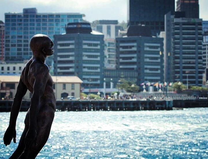 7 Awesome Things To Do In Wellington, New Zealand U2013 The Coolest Little  Capitol
