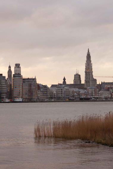 7 awesome things to do in Antwerp, Belgium