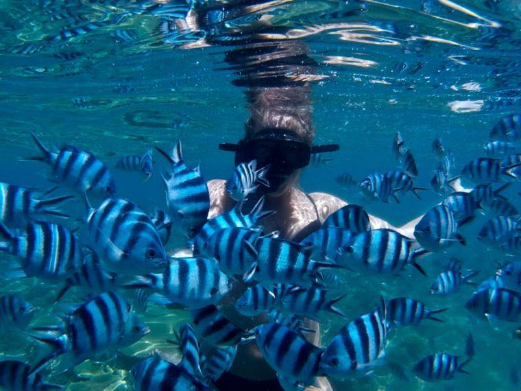 7 Awesome Things to Do in Fiji