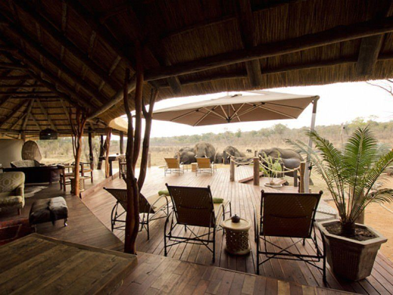 Ultimate list of best luxury hotels and backpacker hostels in Hwange National Park, Zimbabwe_Ivory Safari Lodge