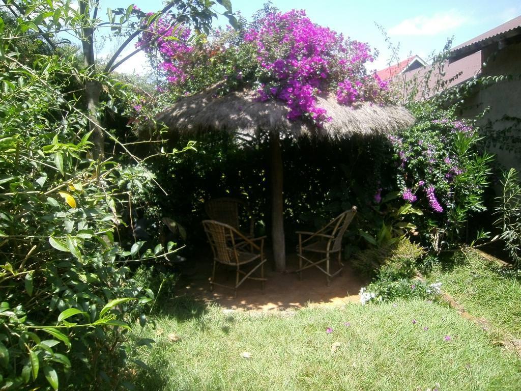 ultimate list of best (luxury or backpacker) hotels (or hostels) in (Kitale, Kenya) (Africana Yard)