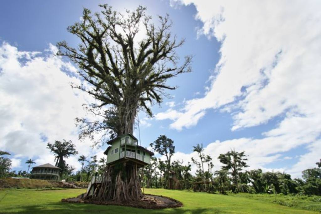 Ultimate List of Luxury Hotels in Samoa Lupe Sina Treesort