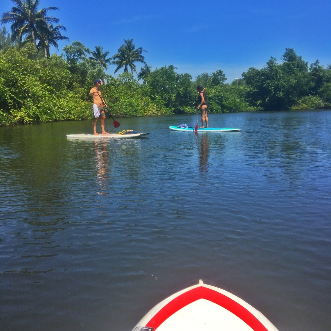 Paddle boarding in Jupiter's Intercoastal Waterway