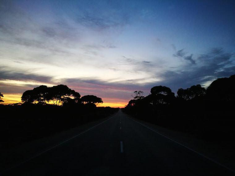 two monkeys travel - nullarbor traveller - australia 9