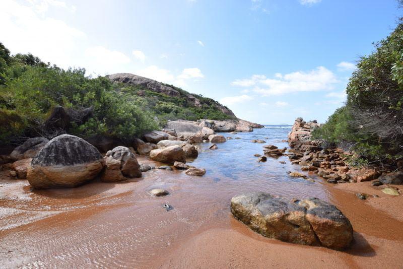 two monkeys travel - nullarbor traveller - australia 6