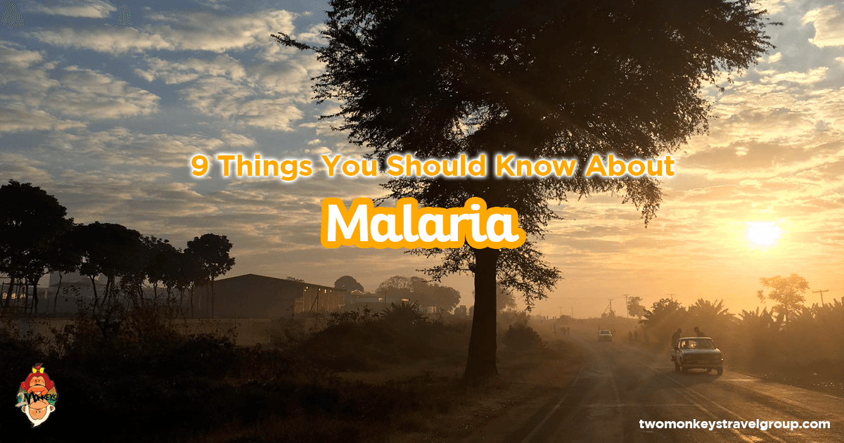 9 Things You Should Know About Malaria