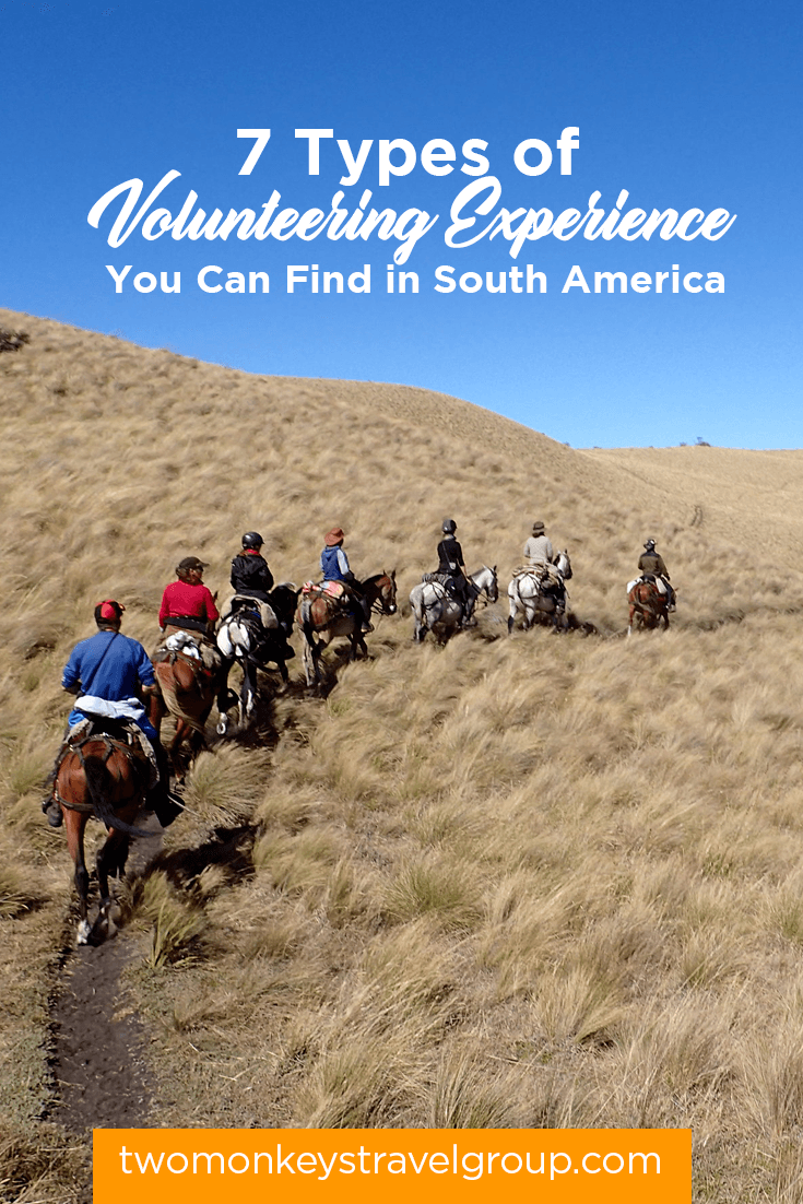 7 Types of Volunteering Experience You Can Find in South America