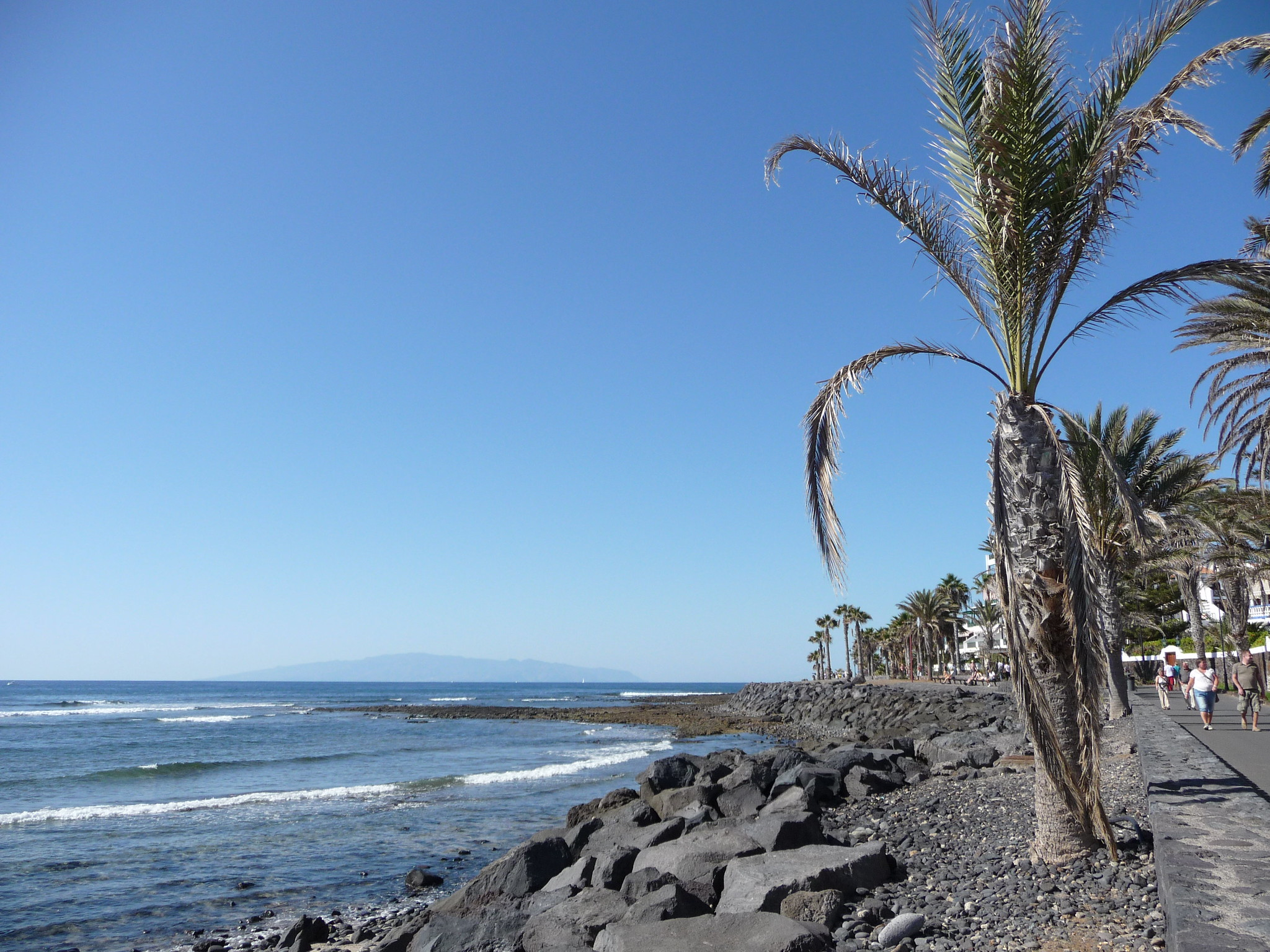 15 Best Things To Do in South Tenerife, Spain