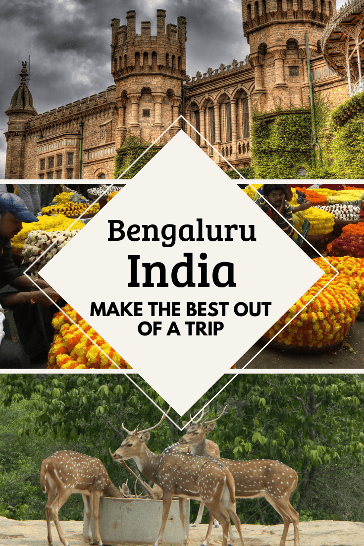 How To Make The Best Out Of A Trip To BangaloreBengaluru, India2