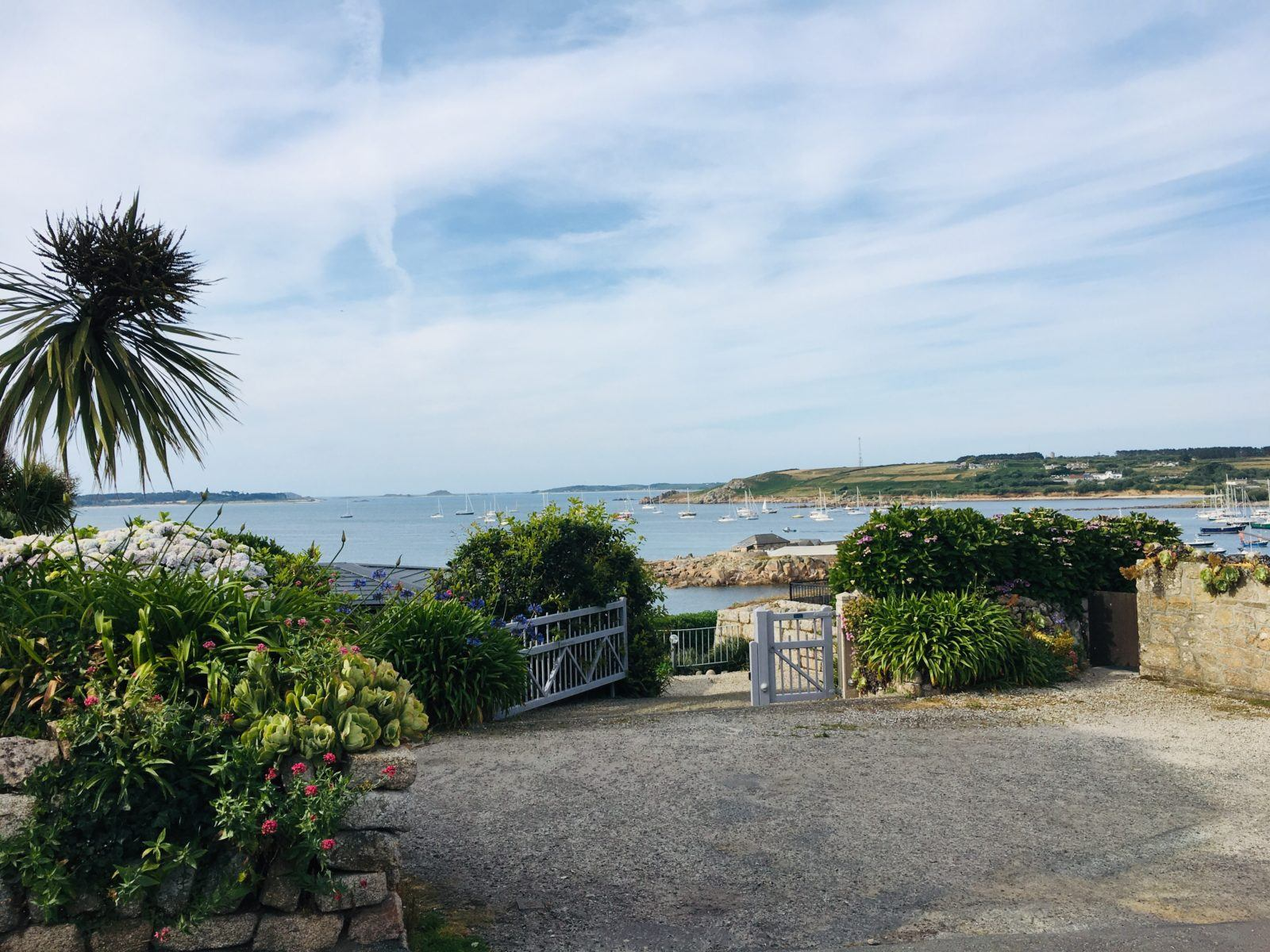Our Scilly Adventure One Week Camping in England's Secret Tropical Paradise4