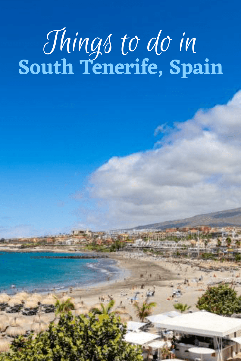 Things to Do in South Tenerife Spain
