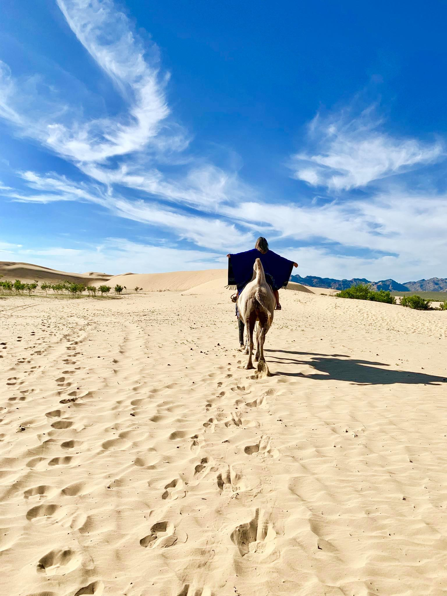 UK Passport Holder Visa Guide Tips on How a British Citizen Can Get a Tourist Visa to Mongolia1