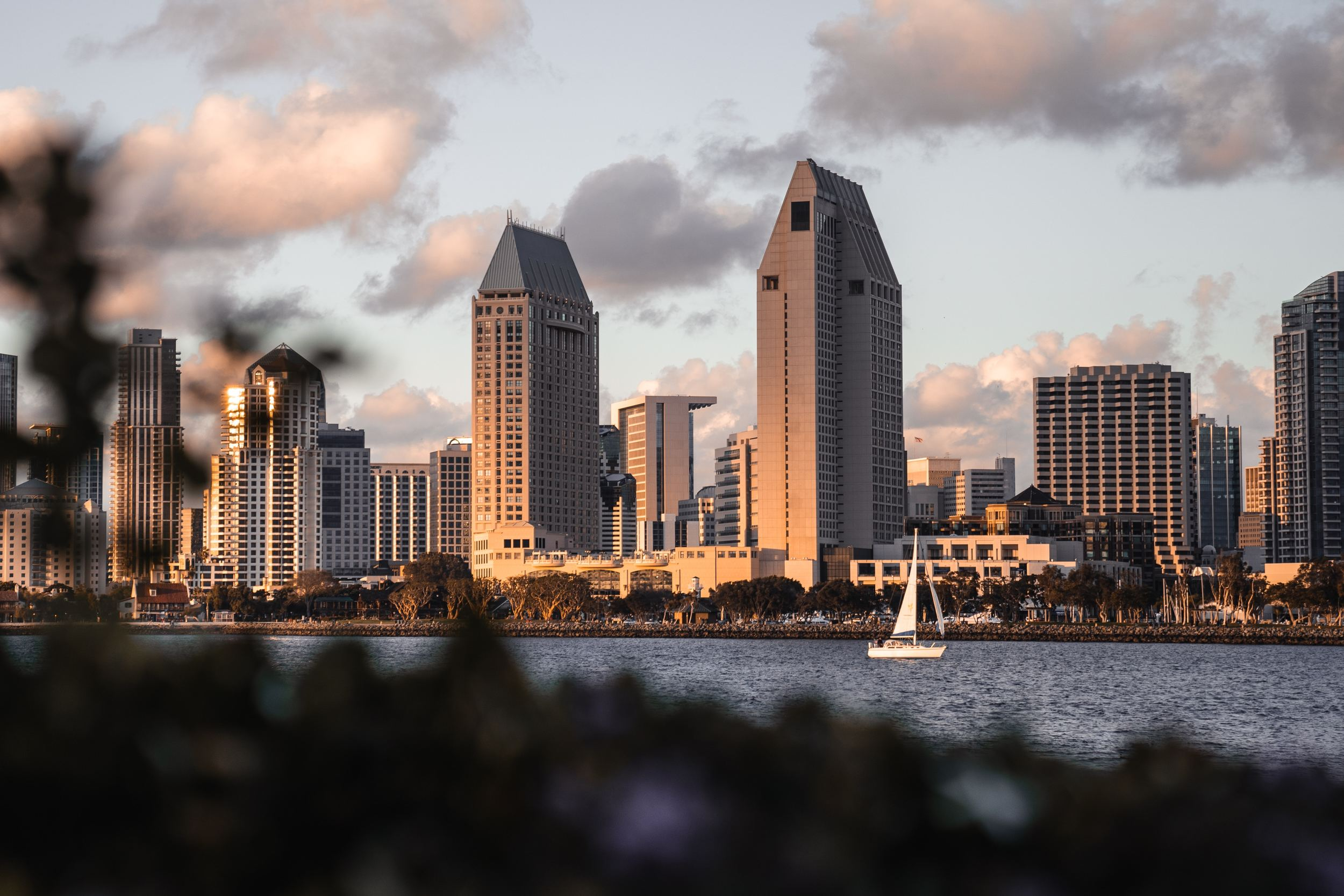 Best Things to Do in San Diego, California