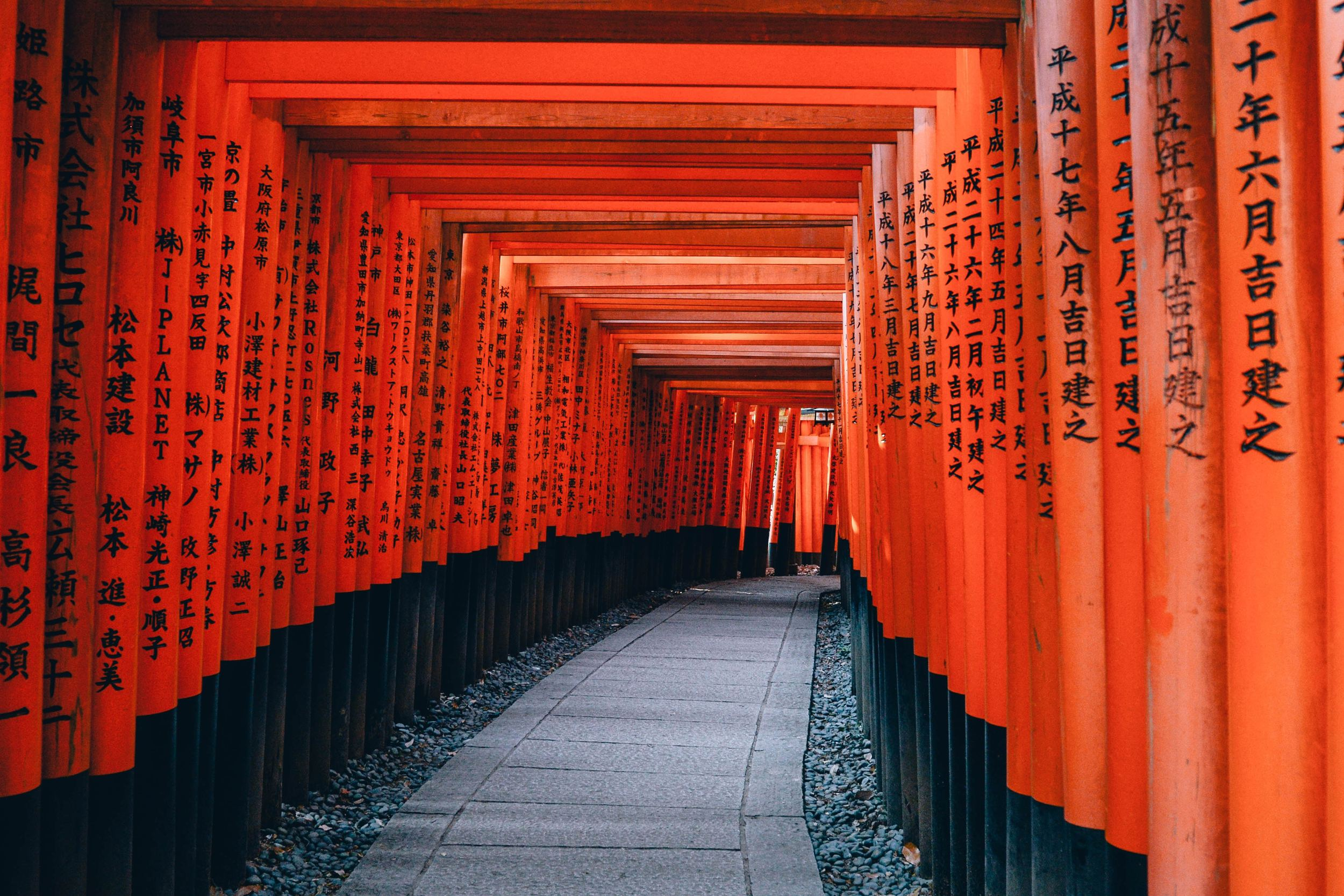 Ultimate Guide to Japan Working Holiday Visa