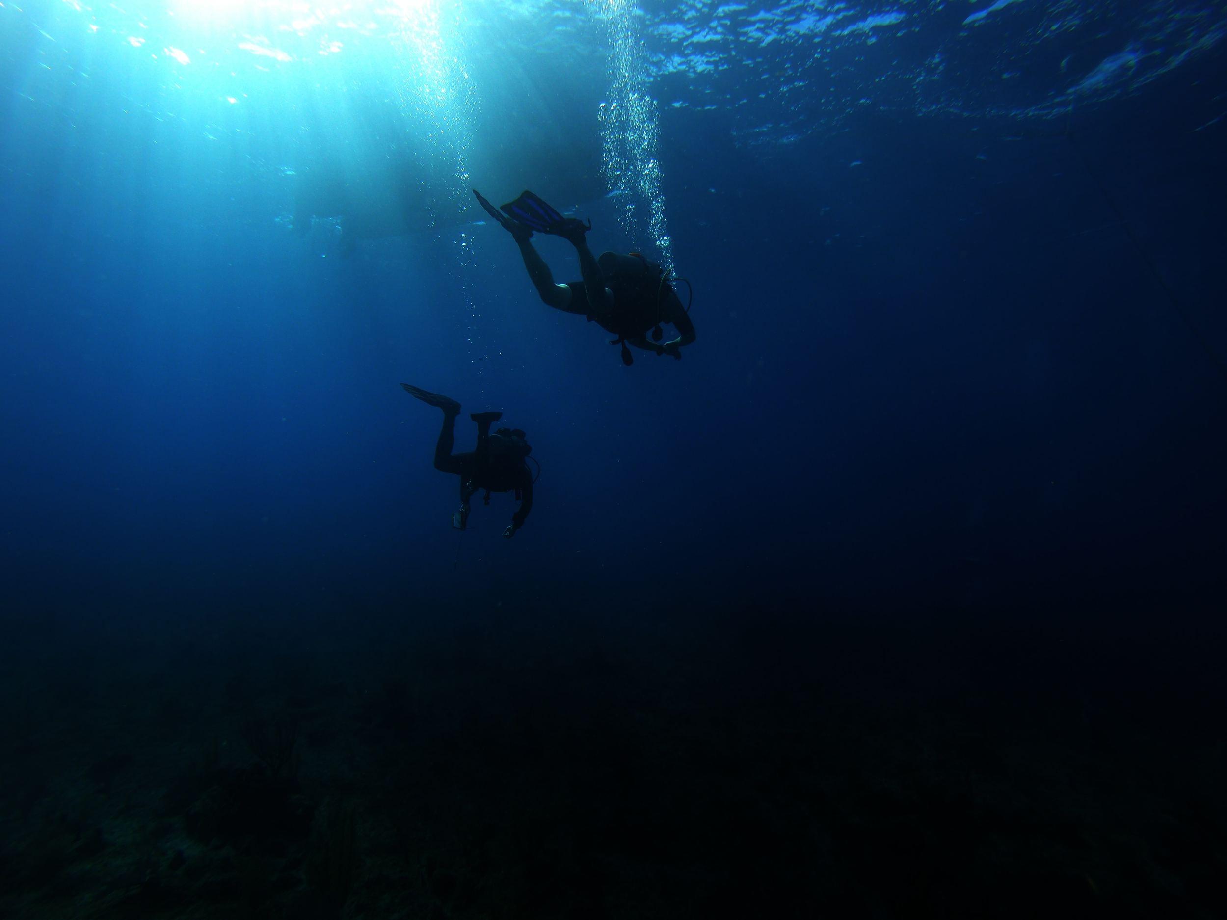 20 Best Scuba Diving Destinations In The World10