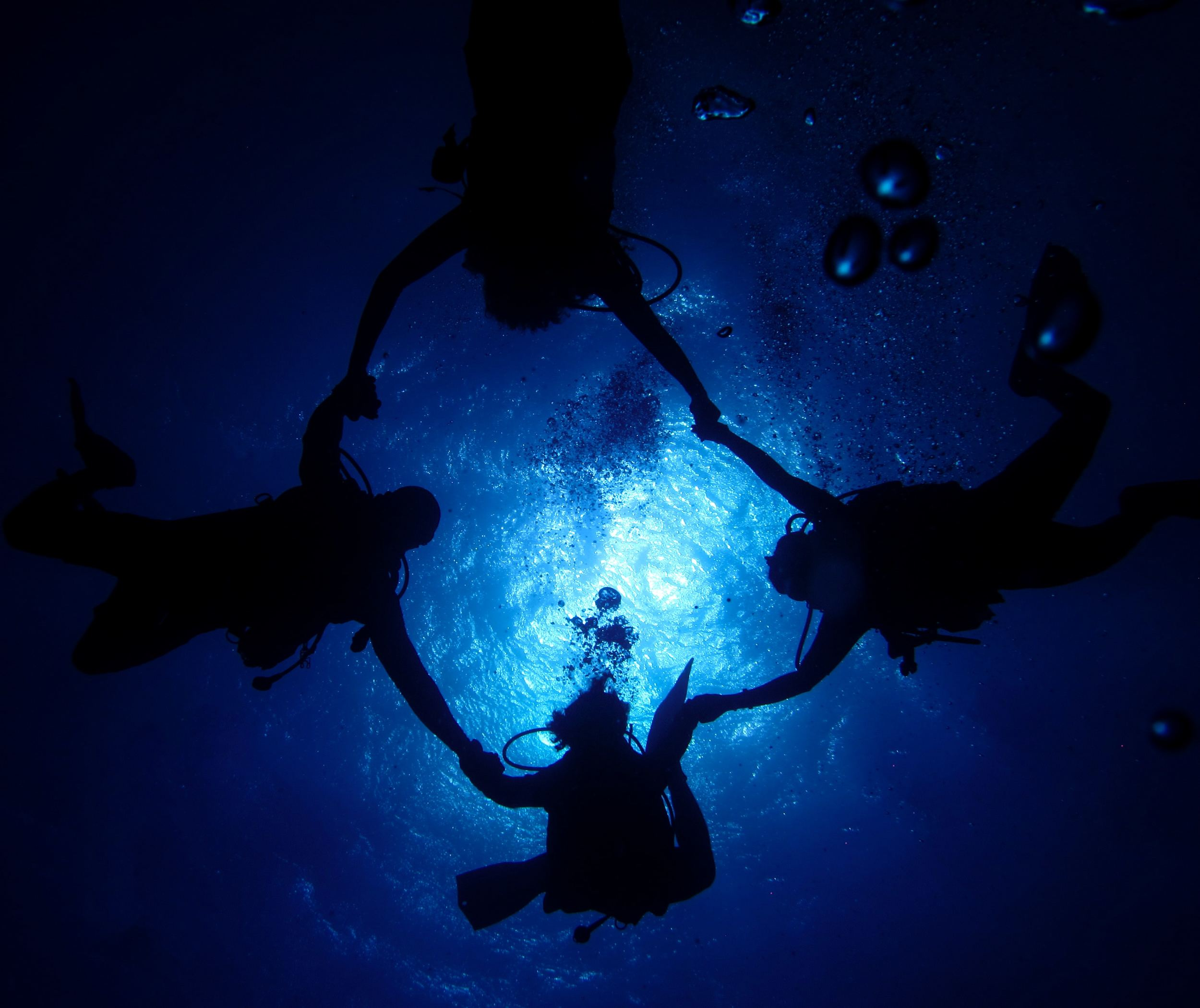 20 Best Scuba Diving Destinations In The World5