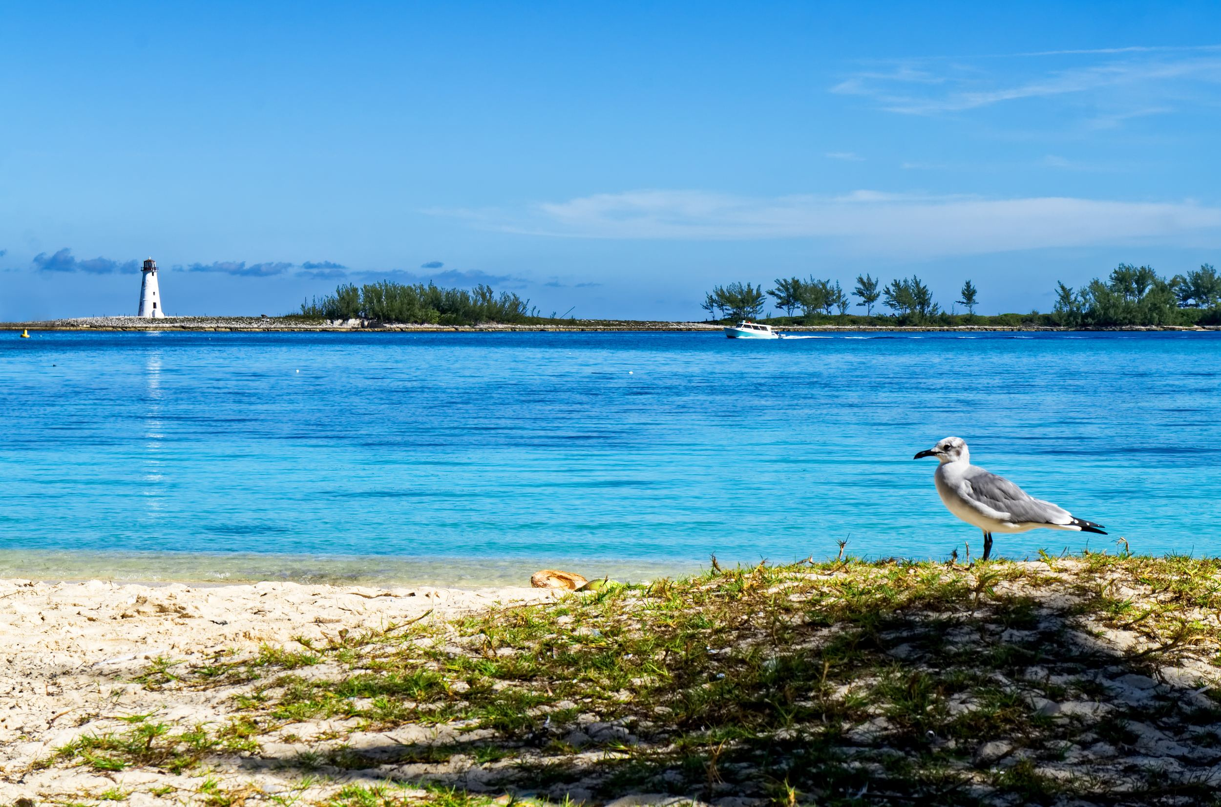 Best Beaches in Nassau, Bahamas Top 10 Beaches in Nassau