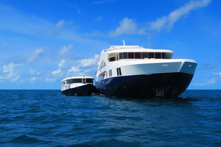 Best Liveaboard Dive Trips in Maldives1