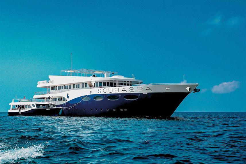 Best Liveaboard Dive Trips in Maldives3