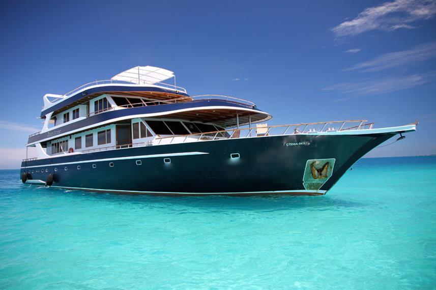 Best Liveaboard Dive Trips in Maldives7