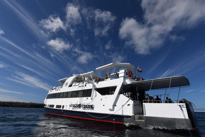 Best Liveaboards Dive Trips in Galapagos, Ecuador10