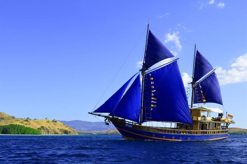 Best Liveaboards Dive Trips in Indonesia