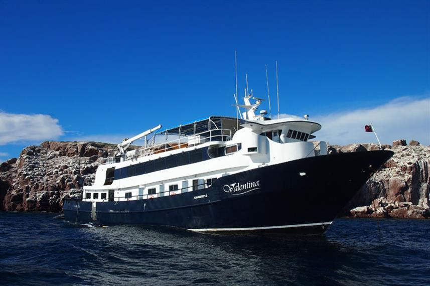 Best Liveaboards Dive Trips in Mexico